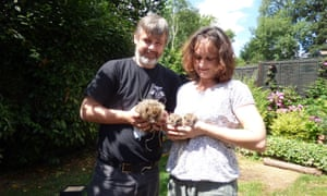 Trevor Weeks with his partner Kathy Martyn and a family of hedgehogs.