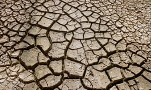 A new climate forecast predicts annual global temperatures are likely to be at least 1C above pre-industrial levels in each year between 2020 and 2024, leading to more extreme weather such as droughts.