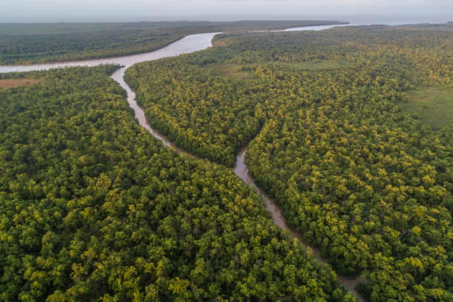 An aerial shot of Igarapé Cobra and Hell's Canal on the island nature reserve of Maracá-Jipioca Ecological Station, Amapa, Brazil.