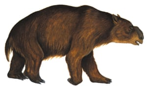 Picture of Diprotodon