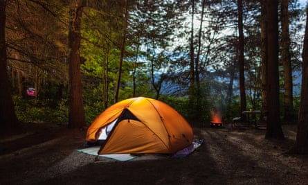 Tent pitched in a forest