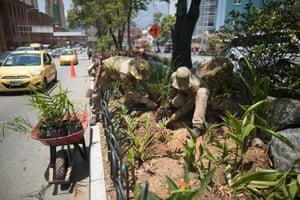Gardeners working on the Green Corridor, Oriental Avenue, in Medellín, Colombia