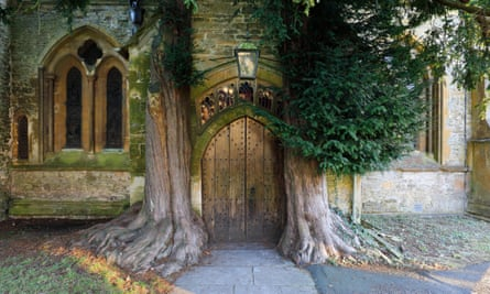 Yew trees and door of St Edward's church, Stow-on the-Wold, Gloucestershire.