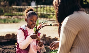 Little girl helping her mother in the gardenLittle girl holding a vegetable outdoors with her mother. Daughter holding young beetroot plant with mother in the farm. Little girl helping her mother in the garden