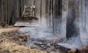 A bulldozer among burnt trees