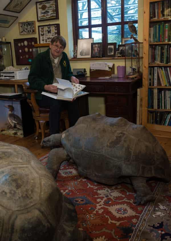 Carl Jones among his stuffed giant tortoises and other animal specimens