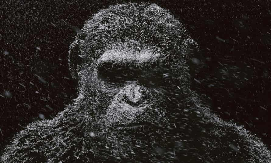 War for the Planet of the Apes hits screens this summer.