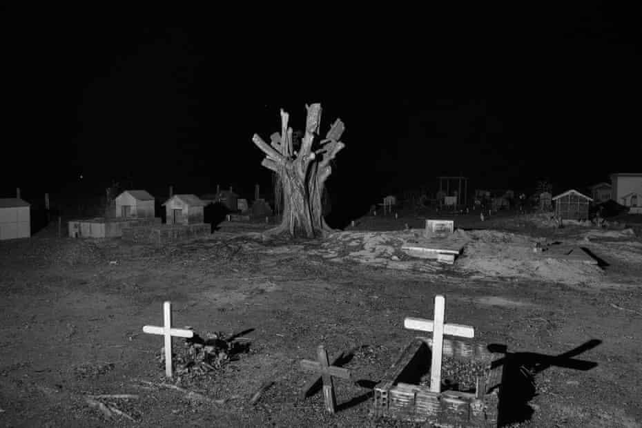 A chopped-down tree inside a cemetery near Novo Progresso, Para, August 2020.
