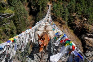 Jorsale, Nepal: mules carry goods over a bridge in the Everest region