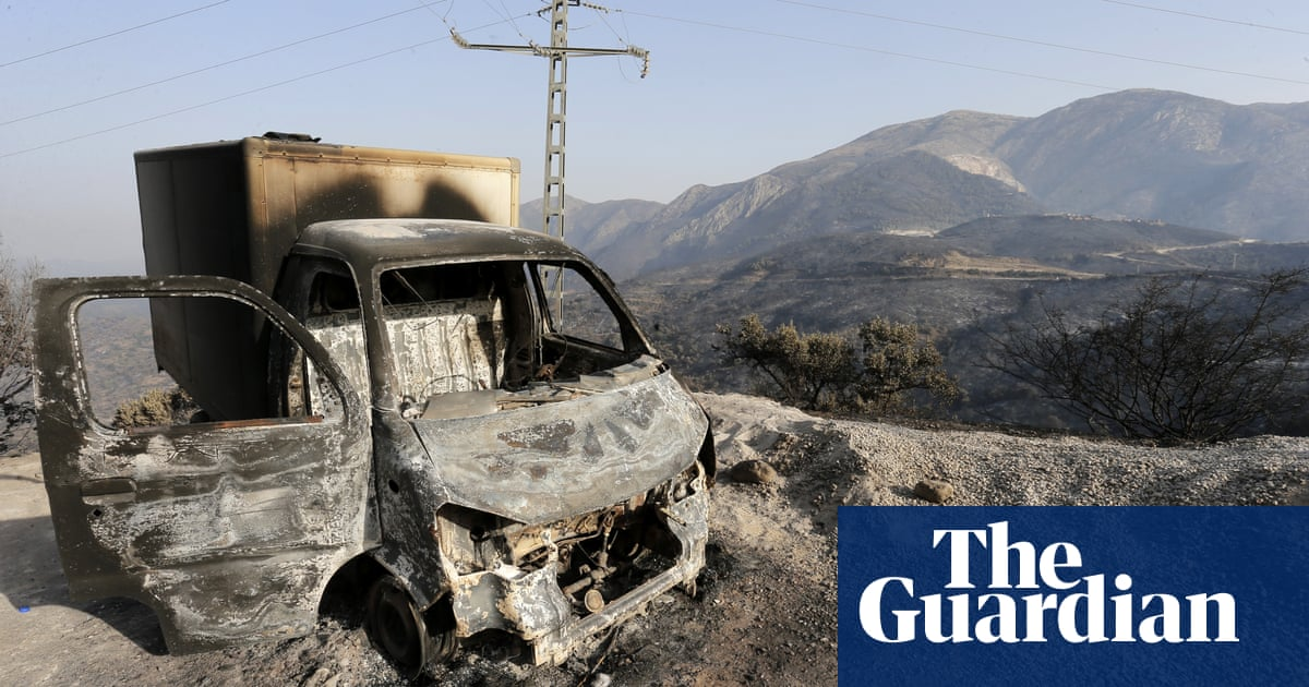 Algeria: 61 arrested after mob kills man falsely accused of starting deadly fires