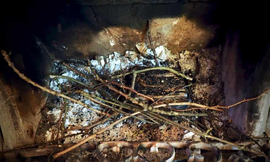 Jackdaw nest sticks in fireplace