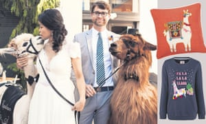 A llama wedding in Oregon (the one on the left is an alpaca); and some llama-themed products.