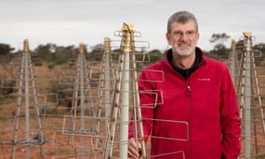 Dr Lewis Ball, chief of CSIRO astronomy and space science, with 'Christmas trees'. Believe it or not, these are the future of radio astronomy.