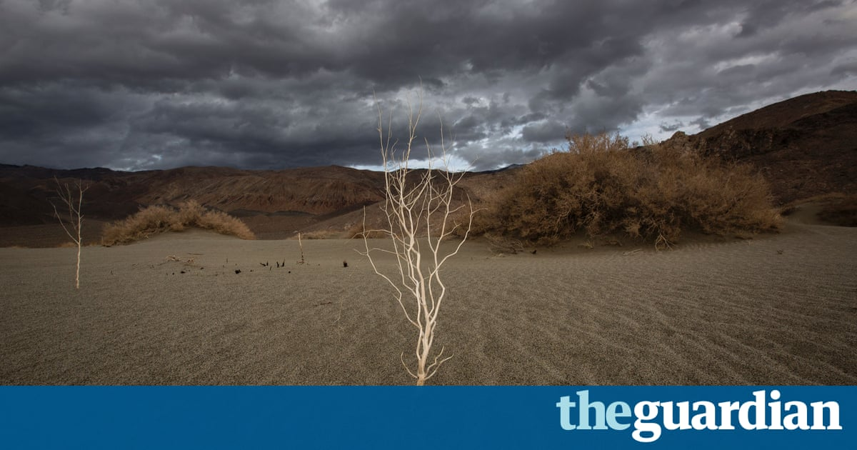US federal department is censoring use of term 'climate change', emails reveal