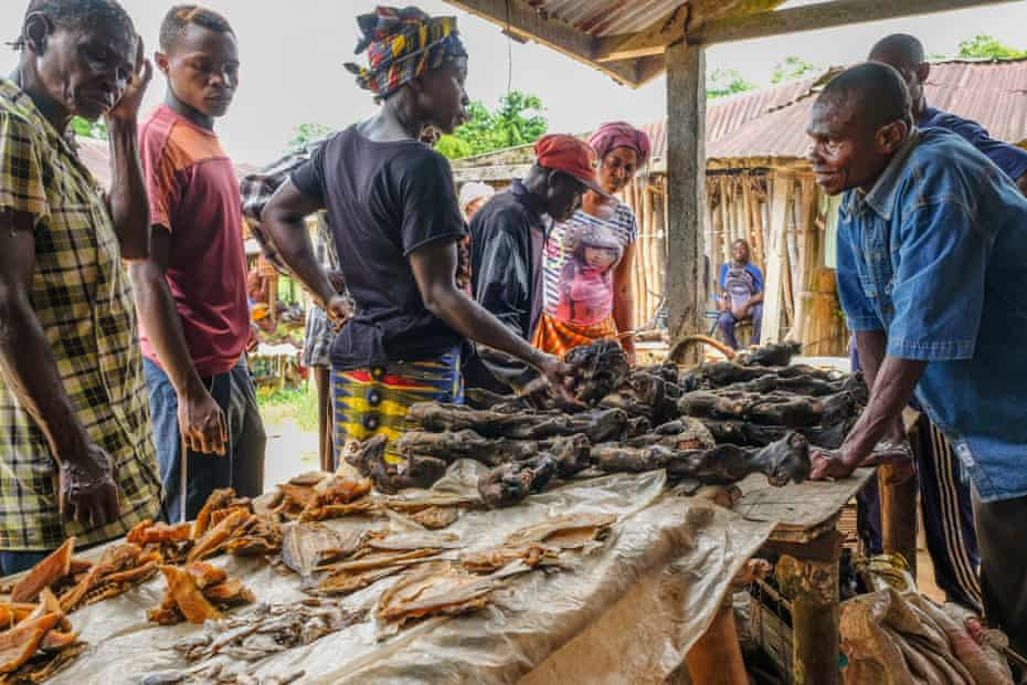Bushmeat on sale at the weekly market in Yangambi, DRC