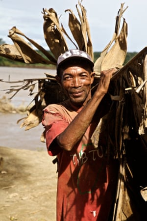 Liman gathers palm fronds from the riverbank