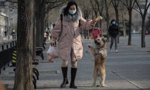 A woman plays with a pet dog in a community park amid the ongoing coronavirus pandemic, in Beijing, China, 20 January 2021.