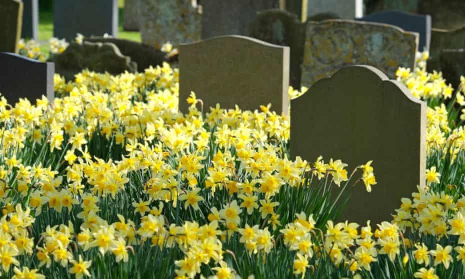 cemetery in holt, norfolk