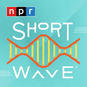 'As ambitious as they come' ... Shortwave podcast on NPR