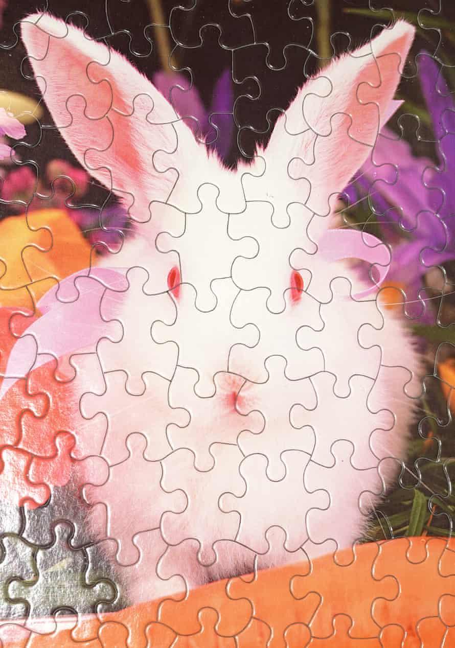 A bunny puzzle.