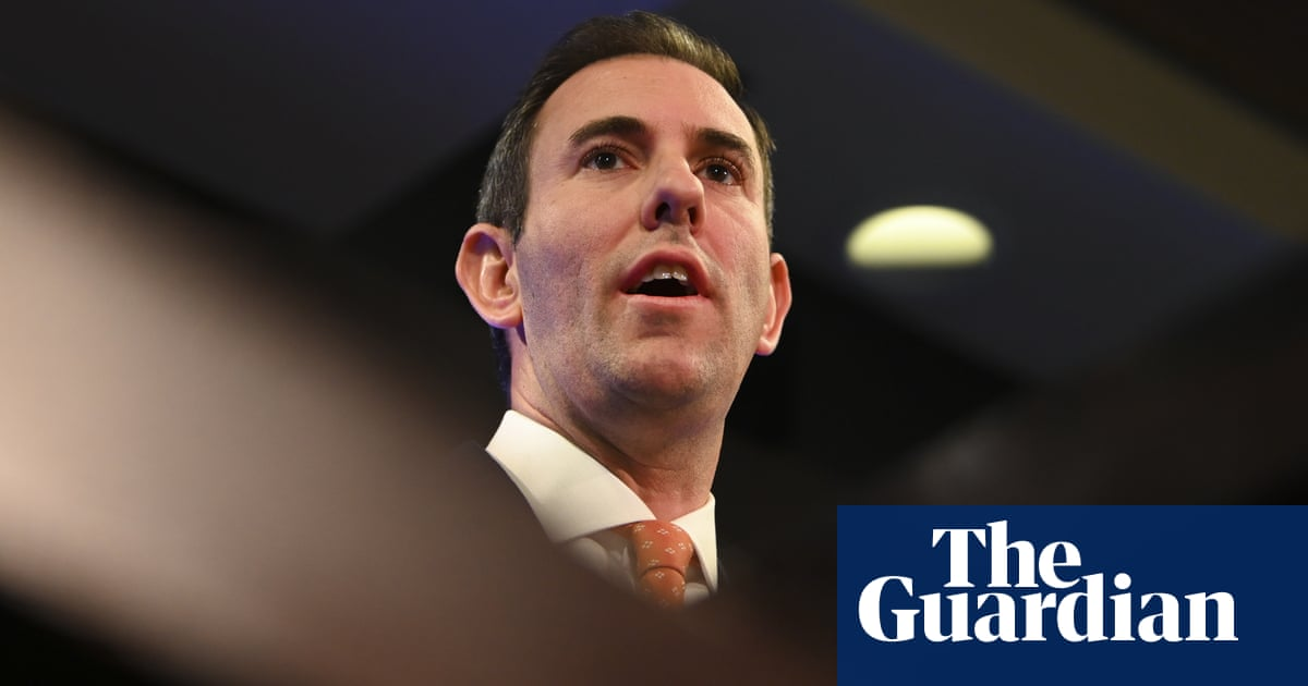 Jim Chalmers ditches Labor's pre-election pledge to conduct review into Newstart