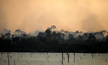 A 2,000km journey through the Amazon rainforest - podcast