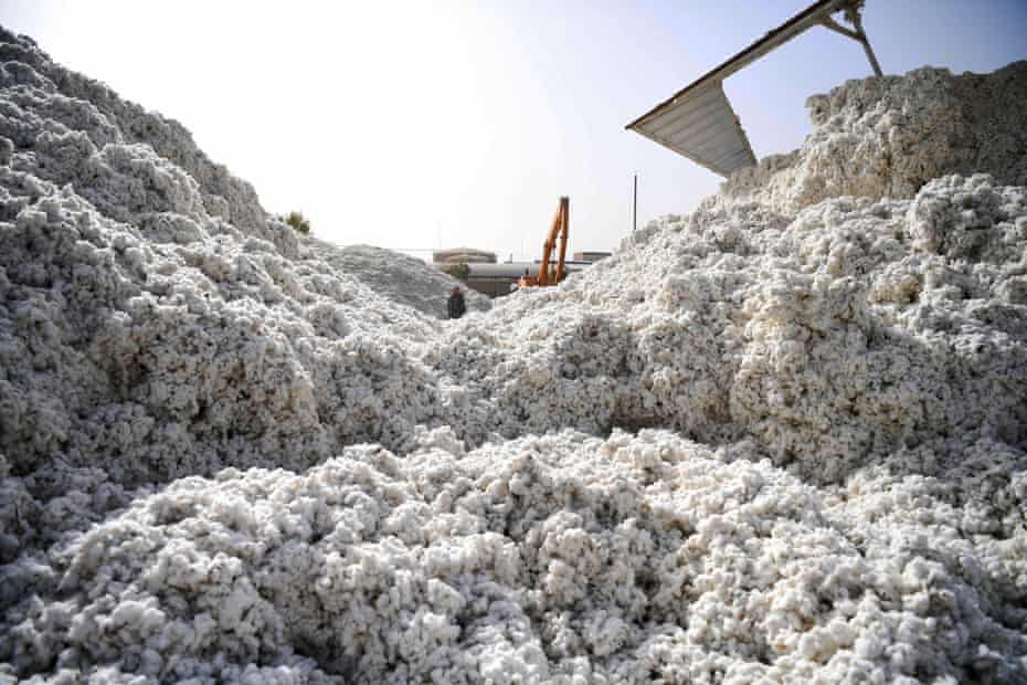 A cotton factory in China's Xinjiang province.