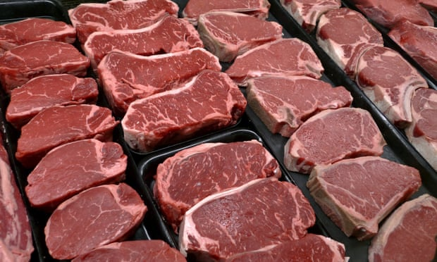 Rising global meat consumption 'will devastate environment' (theguardian.com)