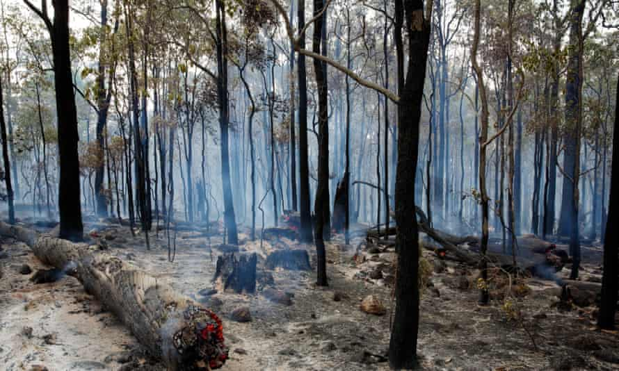 The Western Australia bushfires have already almost entirely wiped out the small town of Yarloop, destroying 121 homes and gutting heritage buildings.