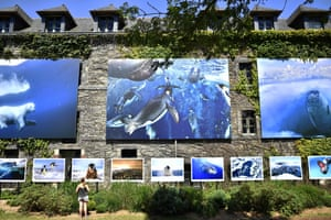 A woman looks at photographs by Paul Nicklen as part of the 2016 outdoor photography exhibition in La Gacilly