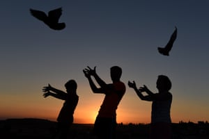 People release homing pigeons during the solar eclipse, Almazán, Spain
