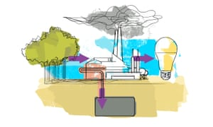 Part of Microsoft's ambitious carbon removal project is the usage of bioenergy