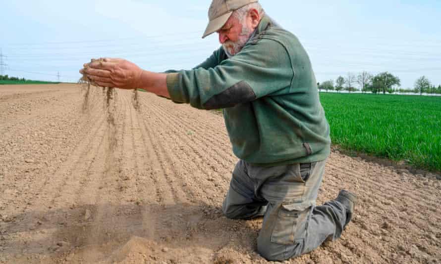 Çiftçi Roland Hild, Nisan 2020'de Almanya'nın Poppenweiler kentinde tarlasının kuruluğunu gösteriyor.