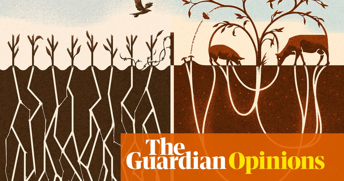 If you want to save the world, veganism isn't the answer | Isabella