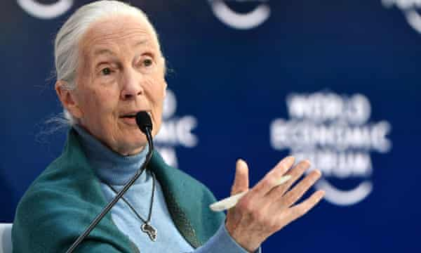 Primate expert Jane Goodall says humans are 'finished' if we do not alter our food habits following the pandemic.