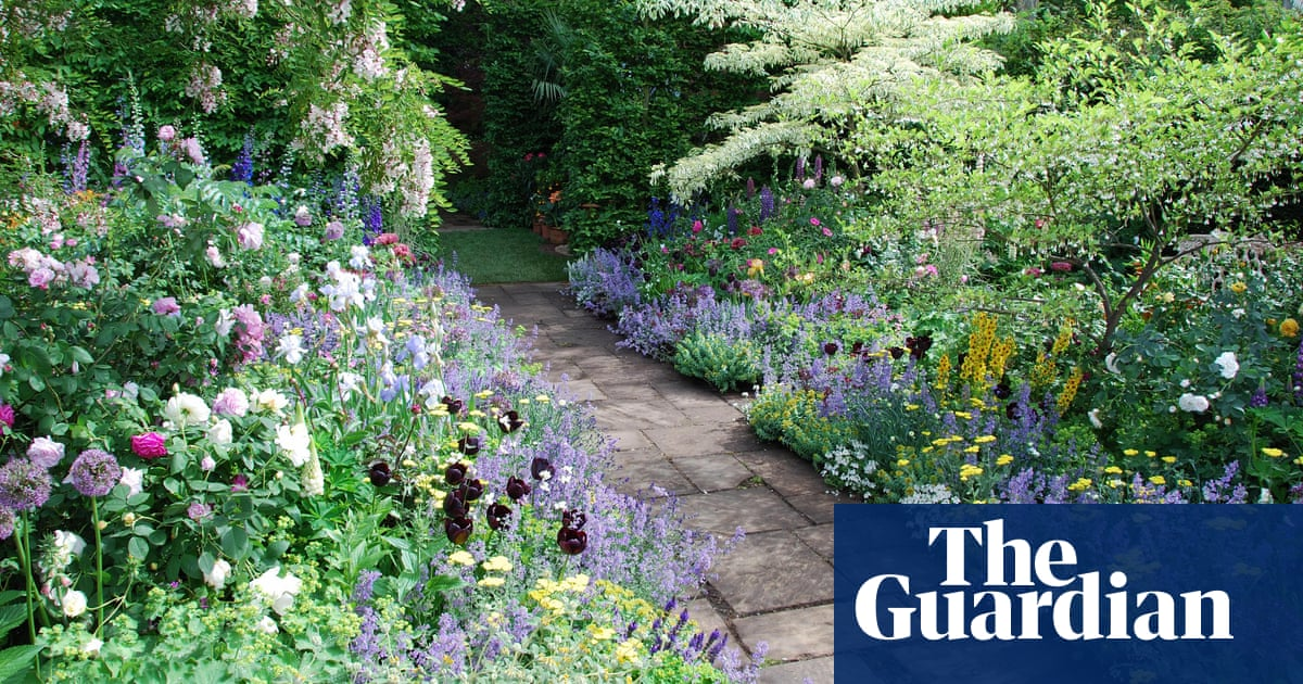 Gardening for beginners: the cheat's guide to herbaceous ...