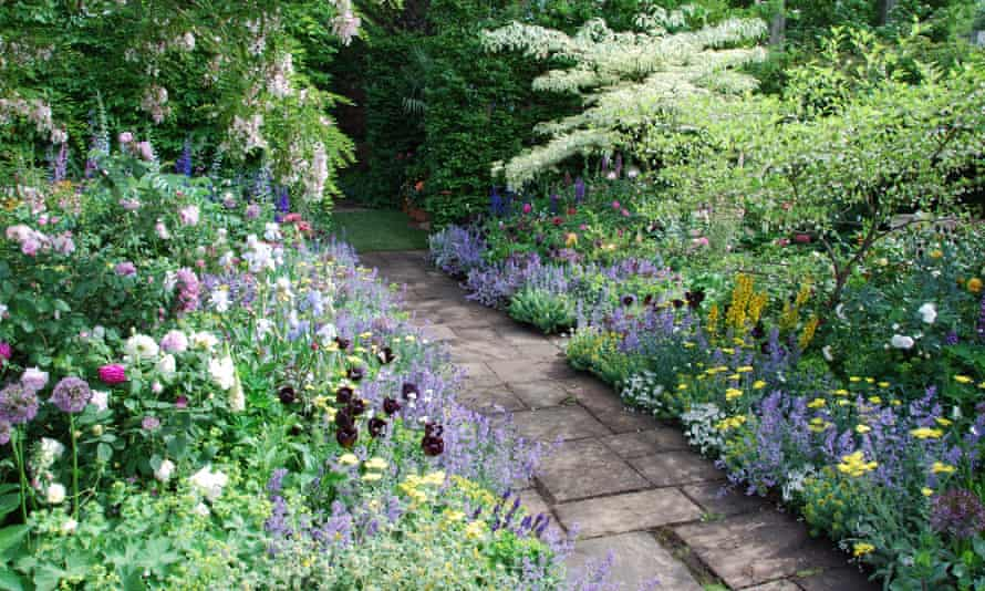 Herbaceous Borders, How To Plan A Cottage Garden Uk