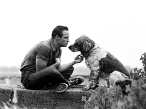 Marlon Brando and family dog, Libertyville, Illinois, 1950