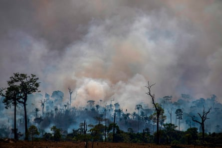 Smokes rises from forest fires in Altamira, Parà state, Brazil.