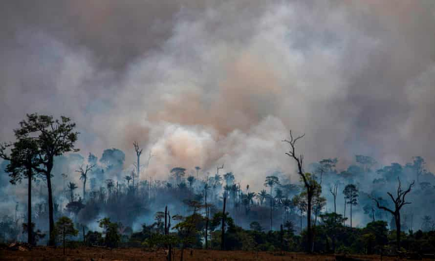 Smokes rises from forest fires in Altamira in August. Farm owners have scuffled with forest defenders in the Amazonian city.