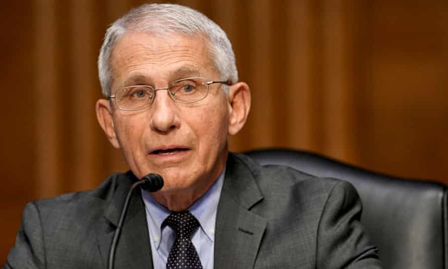 Dr Anthony Fauci answers questions during a Senate hearing this week.