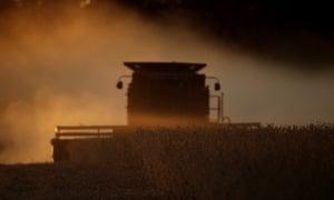 A US farmer harvesting soybeans.