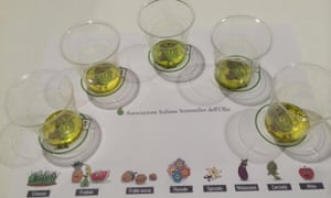 The different oils arranged on a tasting sheet.