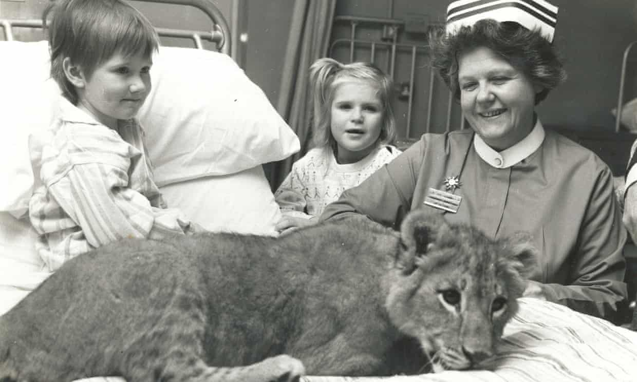 June Jolly at the Brook Hospital, in Shooter's Hill, south-east London in 1971. To lighten children's experience of being in hospital she once brought in circus animals