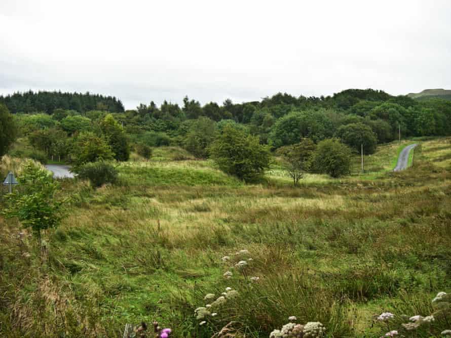 Auchalton Meadow, Ayr, Scotland, UK.