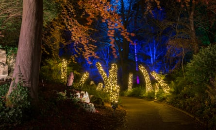 2 Aviary gardens light trail, Christmas at Waddesdon Manor