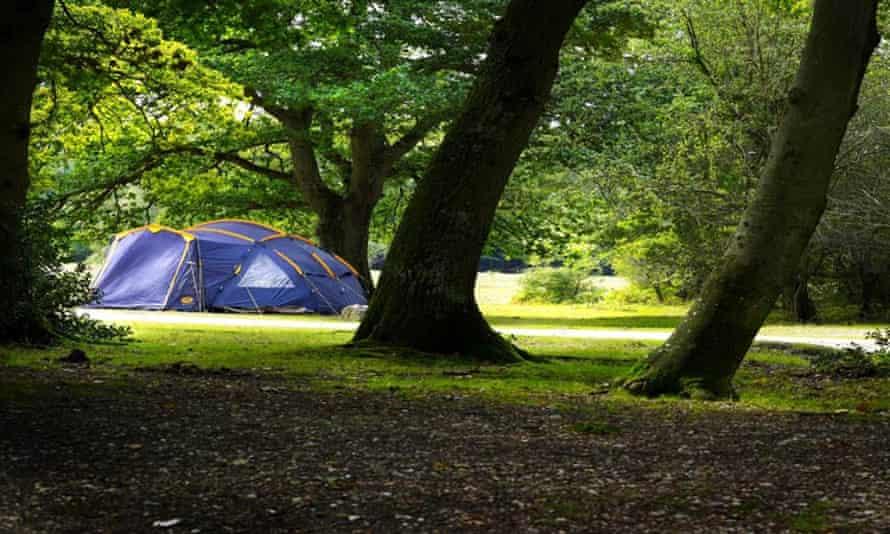 Ashurst Campsite, New Forest