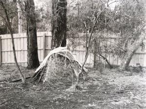 Backyard Oli Haptic Study (2015), by Siri Hayes