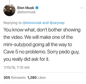 A screen grab of a tweet sent by Elon Musk and subsequently deleted.