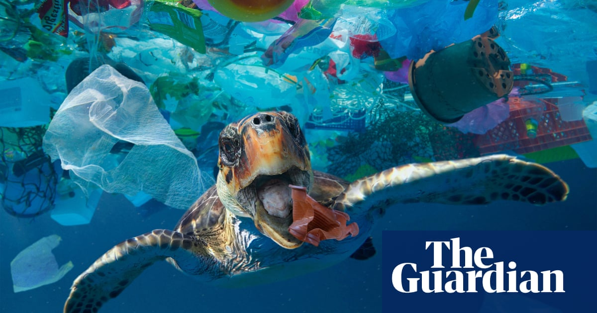 Takeaway food and drink litter dominates ocean plastic, study shows